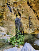 Barranco del Infierno(Hell's Gorge), Tenerife, Canary Islands — Stock Photo