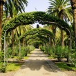 Park in Santa Cruz de Tenerife, Canary Islands, Spain - Foto Stock