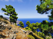 Las Playas, Hierro, Canary Islands — Stock Photo