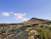 La Restinga, El Hierro, Canary Islands — Stock Photo