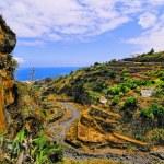 Barranco de las Nieves, La Palma — Stock Photo #30218349