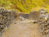 Barranco de las Nieves, La Palma — Stock Photo