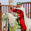 Постер, плакат: Royal guard in front of the Hassan Tower and Mausoleum of Mohammed V in Rabat
