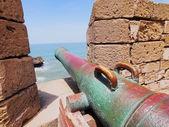 Alte kanone in essaouira, marokko — Stockfoto