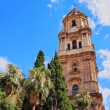 Cathedral in Malaga, Spain — Stock Photo #33918119