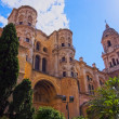 Cathedral in Malaga, Spain — Stock Photo