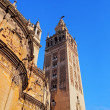 Cathedral in Seville, Spain — Stock Photo