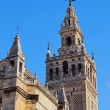 Cathedral in Seville, Spain — 图库照片