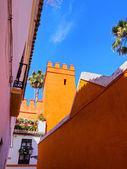 Santa Cruz District in Seville — Photo