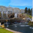 Peterhof in Russia — Stock Photo #36219711
