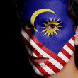 Stock Photo: Flag of Malaysia