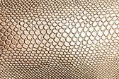 Textura de couro grunge para plano de fundo — Foto Stock