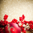 Christmas decoration with european holly — Stock Photo #16968217