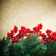 European holly anf fir-tree on golden background, shallow DOF - Foto Stock