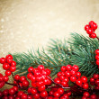 European holly anf fir-tree on golden background, shallow DOF — ストック写真