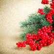 Stock Photo: Europeholly and fir-tree on golden background, shallow DOF