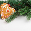 Christmas decoration with fir-tree on grey — Stock Photo