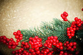 European holly anf fir-tree on golden background, shallow DOF — Stock Photo