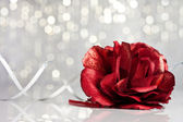 Red rose with festive background — Stock Photo