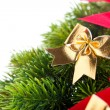 Stock Photo: Branch of Christmas tree with ribbon