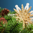 Branch of Christmas tree with snowflake - Zdjęcie stockowe