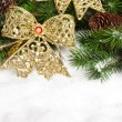 Branch of Christmas tree with bow - 