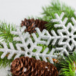 Branch of Christmas tree with snowflake - 