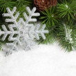 Branch of Christmas tree with snowflake - Stok fotoraf