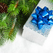 Foto Stock: Branch of Christmas tree with gift box