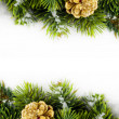 Branch of Christmas tree with pinecone — Stock Photo #17139051