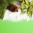 Branch of Christmas tree with pinecone and poinsettia — Stock Photo