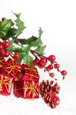 Geschenkdozen met pinecone en europese holly — Stockfoto