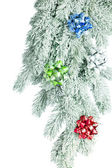 Branch of Christmas tree on white snow — Foto Stock