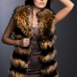 Beautiful fashionable woman in fur — Stock Photo