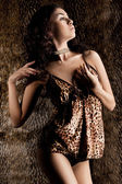 Elegant fashionable woman in tigrine cloth — Stock Photo