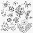 Set flowers hand drawn vector background elements — Grafika wektorowa