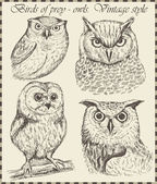 Vector set: birds - variety of vintage bird illustrations — Stock vektor