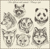 Vector set: different wild animals - various vintage style. — Stok Vektör