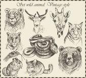 векторный набор: разные дикие животные - различные винтажный стиль. — Cтоковый вектор