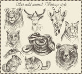 Vector set: different wild animals - various vintage style. — Vecteur