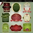 Vector set: gold-framed labels for Merry Christmas — Stockvector #14090315
