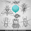 Cтоковый вектор: Vector set insects in vintage style