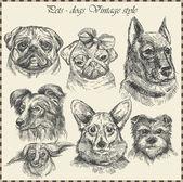 Set chien dans le style vintage. vecteur dessiné à la main — Vecteur