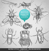 Vector set insects in vintage style — Vector de stock