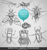 Vektorové sada hmyzu v retro stylu — Stock vektor