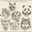 Stock vektor: Vector set: different wild animals - various vintage style.