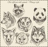ベクトルセット:異なる野生動物 - さまざまなヴィンテージスタイル. — ストックベクタ