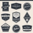 Retro vintage badges and labels. — Stok Vektör