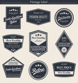 Set of retro vintage badges and labels. — Stock Vector