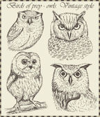 Variety of vintage bird illustrations — Vector de stock